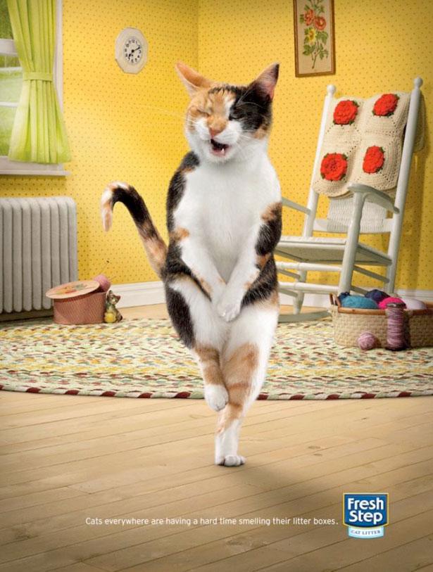 freshstep 20 Funny Print Ads