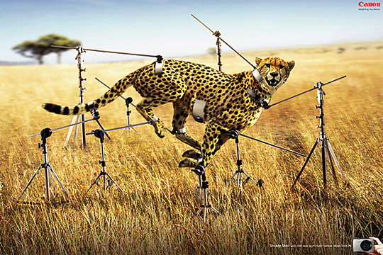 funny print ads 8 20 Hilarious Print Advertisements for Inspiration
