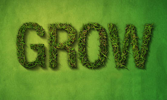 grow your business How to: Grow your business and website in 2014